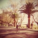 Ciclocross Boiro 2014/6