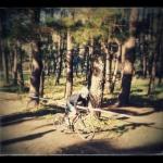 Ciclocross Boiro 2014/3